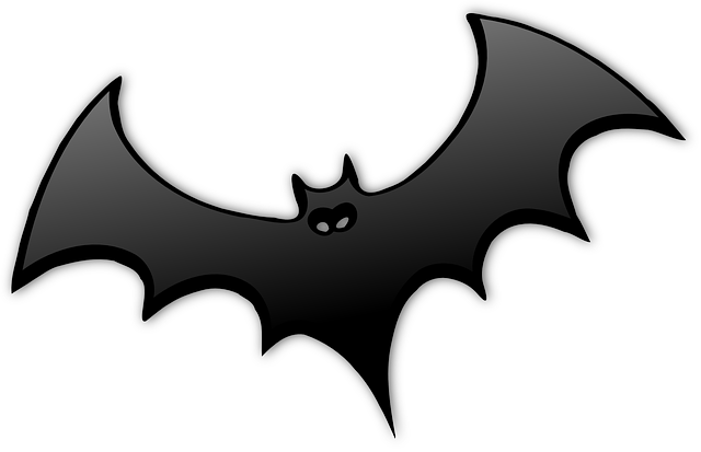 Facts About Bats  Cool Kid Facts